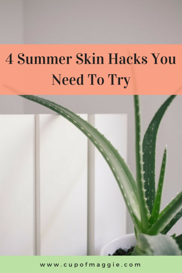 aloe vera plant, summer skin hacks to try