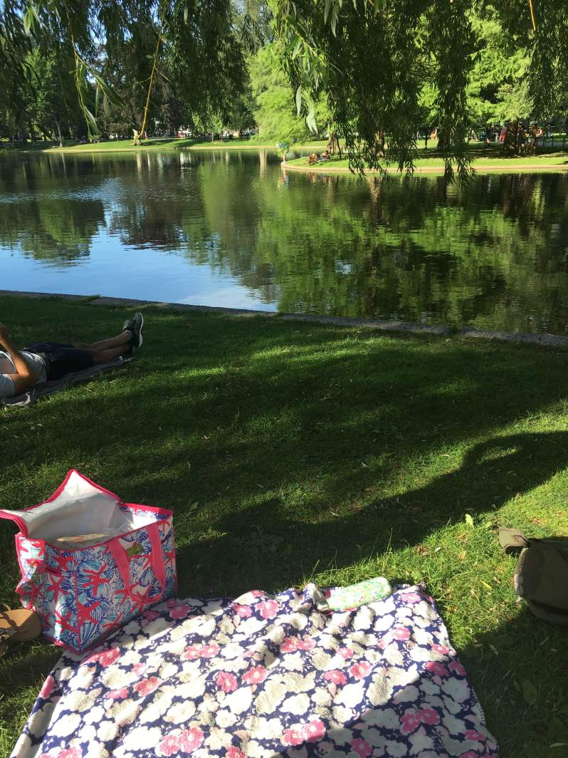 peaceful picnic by the water in the boston public gardens